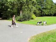 Amateur girlfriend risky blowjob in public park and cumshot on face